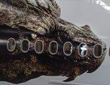 El dragón Smaug de 'El Hobbit: La desolación de Smaug' se deja ver en un avión de Air New Zealand