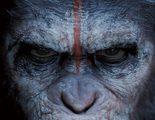 Un teaser prepara el terreno al estreno del primer tráiler de 'El amanecer del planeta de los simios'