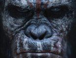 Primer tráiler de 'El amanecer del planeta de los simios', Caesar está de vuelta
