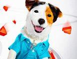 Teaser tráiler y póster de 'Pancho', el perro millonario