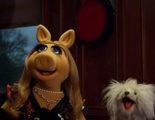 La Rana Gustavo y compañía se cuelan en los Globos de Oro en el nuevo TV Spot de 'El Tour de los Muppets'