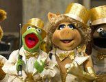 'El tour de los Muppets': El estatismo de las marionetas más famosas de la cultura popular