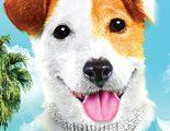 'Pancho, el perro millonario' estrena póster con Ivan Massagué y Patricia Conde