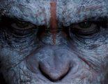 Koba, armado y peligroso en el nuevo clip de 'El amanecer del planeta de los simios'