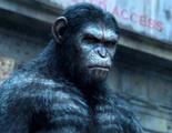 Tensión entre especies en el tráiler final en castellano de 'El amanecer del planeta de los simios'