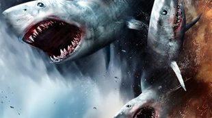 'Sharknado 2', en pantalla grande en el cine de verano 'El Cuartel' de Madrid