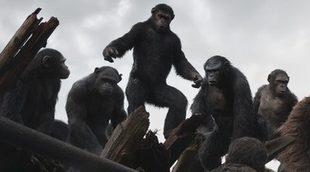 'El amanecer del planeta de los simios' desbanca a 'Maléfica' como mejor estreno norteamericano de 2014 en España