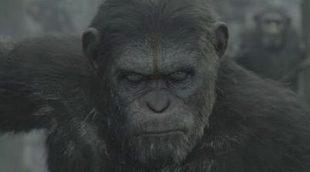 El sexo de Cameron Diaz no puede con 'El amanecer del planeta de los simios' en la taquilla española