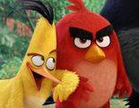 Primera imagen de la película de animación de 'Angry Birds'