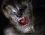 Licántropos de ojos azules en las nuevas imágenes de 'Wolves'
