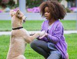 'Annie': Una huérfana hip hopera