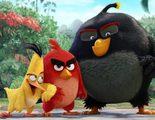 'Angry Birds' estrena primer póster protagonizado por Bomba Volátil