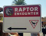 Universal Studios Hollywood libera a un velociraptor en su parque temático