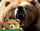 12 osos peligrosos que no eran de peluche