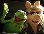 ¡La Rana Gustavo y Miss Piggy se separan!