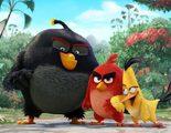 Ya está aquí el primer tráiler de 'Angry Birds', la película