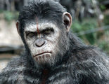 Primera imagen del rodaje de 'War for the Planet of the Apes'