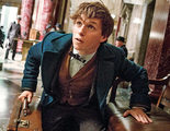 'Animales fantásticos y dónde encontrarlos': Reveladas más criaturas del universo de 'Harry Potter'