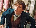 Eddie Redmayne confirma que la palabra 'muggle' aparecerá en 'Animales fantásticos y dónde encontrarlos'