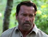 Arnold Schwarzenegger trabajará con Darren Aronofsky en su nueva película