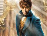 'Animales fantásticos y dónde encontrarlos' será muy similar a 'Harry Potter y el cáliz de fuego'