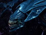 'Alien: Covenant': Veremos a los Xenoformos en todas sus formas