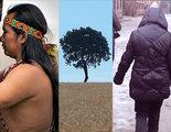 Así son los cuatro cortos documentales que optan al Goya 2016
