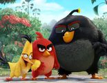 Nuevo tráiler de 'Angry Birds. La película' cargado de risas