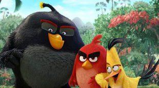 Santiago Segura y Álex de la Iglesia doblarán 'Angry Birds. La película'