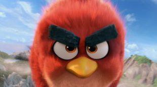 Empieza la batalla en el nuevo tráiler de 'Angry Birds. La película'