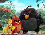 Las primeras críticas de 'Angry Birds, la película' son muy positivas