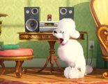 'Mascotas': Úrsula Corberó, su perrita y David Guapo se suman al doblaje