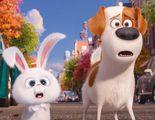 'Mascotas': Festín de animación sin profundidad