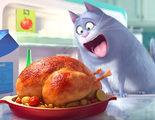 'Mascotas' ya es la película que más ha recaudado en su primera semana de estreno en 2016 en España