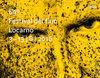 Palmarés completo del 69º Festival de Cine de Locarno