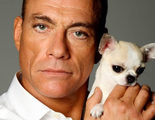 'Jean-Claude Van Johnson': Primer tráiler de la nueva serie de Amazon con Van Damme