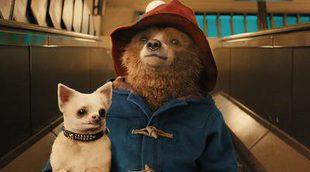 'Paddington 2' anuncia el fichaje de estos dos actores de renombre