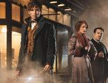'Animales fantásticos y dónde encontrarlos' no recaudaría tanto como la saga 'Harry Potter' en su primer fin de semana