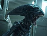 Un conocido personaje podría volver en 'Alien: Covenant'
