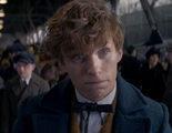 'Animales fantásticos 2': David Yates revela la que podría ser la localización de la segunda entrega de la saga mágica