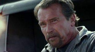 ¿Estará Arnold Schwarzenegger en la secuela de 'Plan de escape'?