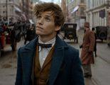 Albus Dumbledore aparecerá en la secuela de 'Animales fantásticos y dónde encontrarlos'