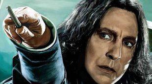 Un fan de 'Harry Potter' destroza el dolmen mejor conservado de Vigo