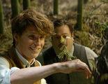 'Animales fantásticos' recauda 30 millones de dólares en su viernes de estreno en Estados Unidos