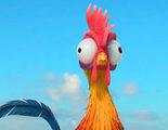 'Vaiana': El gallo Heihei estuvo a punto de no salir en la película por no encajar con la historia