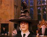 'Harry Potter': El Sombrero Seleccionador le da su nombre a una nueva especie de araña