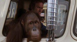 'Duro de pelar', un clásico con Clint Eastwood, tendrá su remake