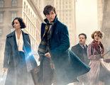 'Animales fantásticos y dónde encontrarlos' gana el primer Oscar para la saga de 'Harry Potter'