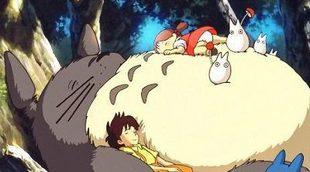 10 curiosidades sobre 'Mi vecino Totoro'