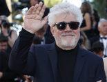 El Deseo desmiente que Pedro Almodóvar vaya a dirigir una serie para Netflix